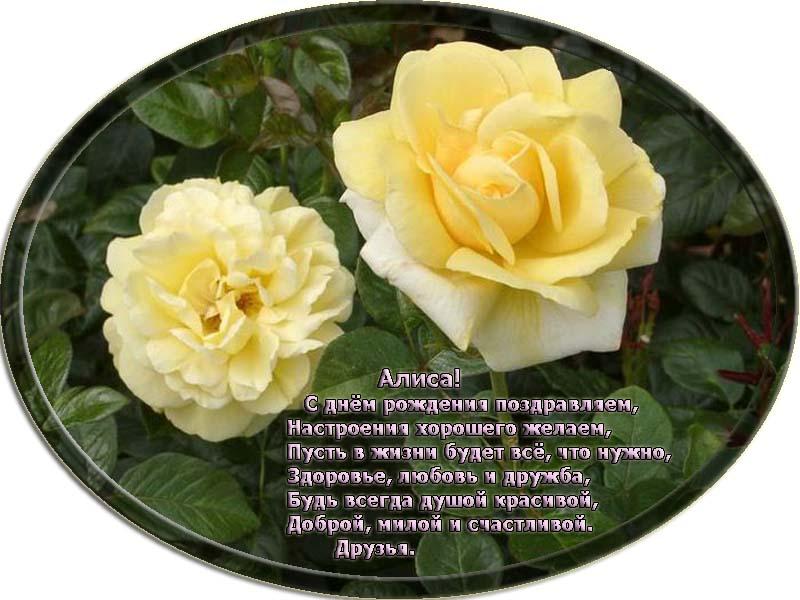 posdravljaem_alissa_issaevskaja
