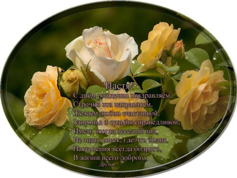 posdravljaem_anastasija_bashkir