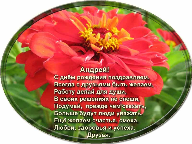 posdravljaem_andrei-novikov