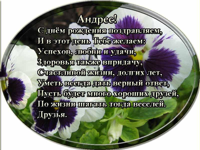 posdravljaem_andres_muristaja
