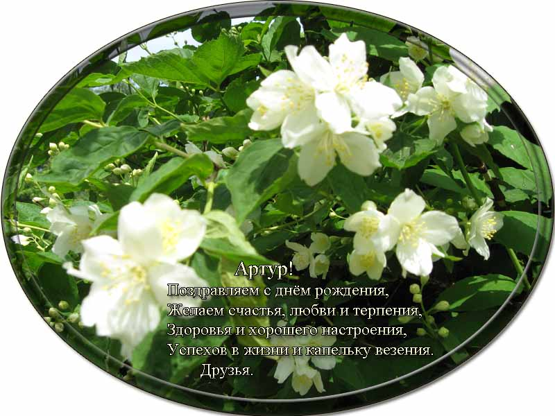 posdravljaem_artur_karjalainen