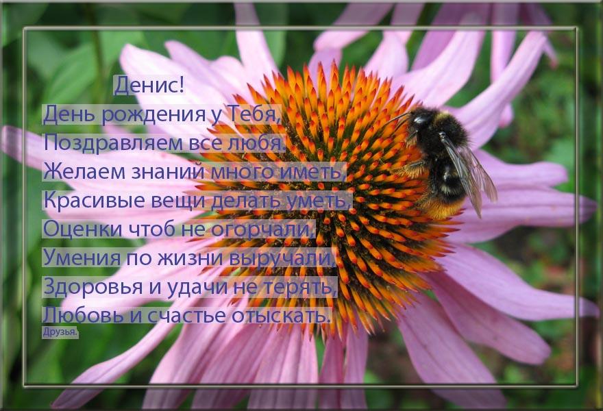 posdravljaem_deniss_kalas
