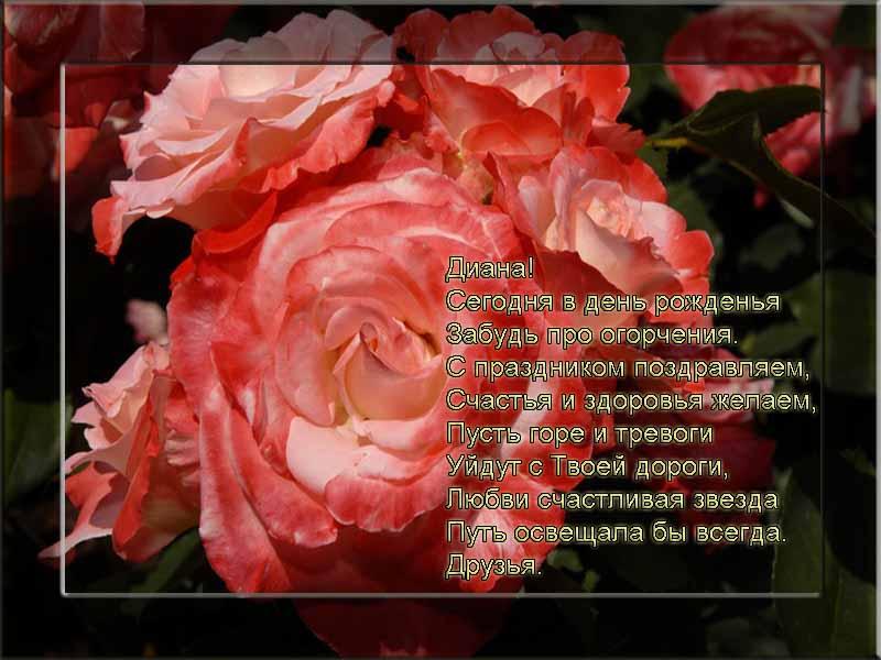 posdravljaem_diana_knjazeva