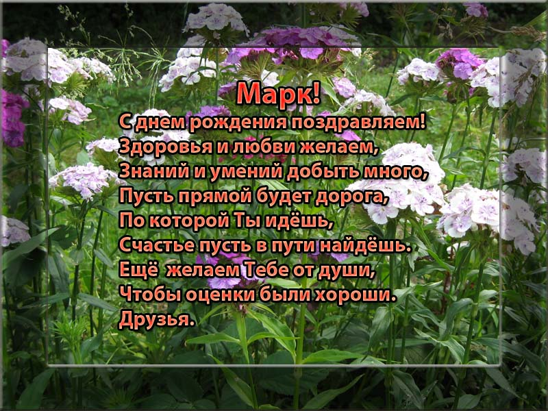 posdravljaem_mark_ev