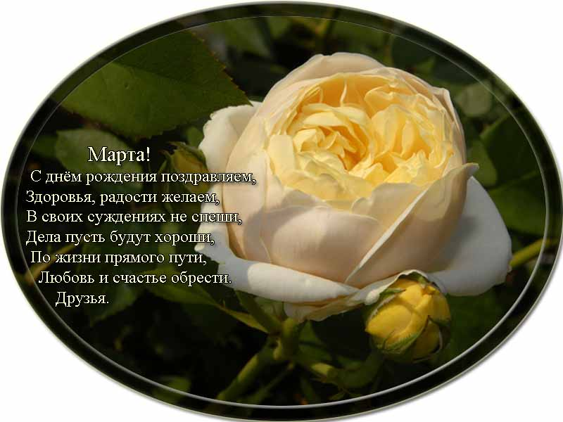 posdravljaem_marta-volchek