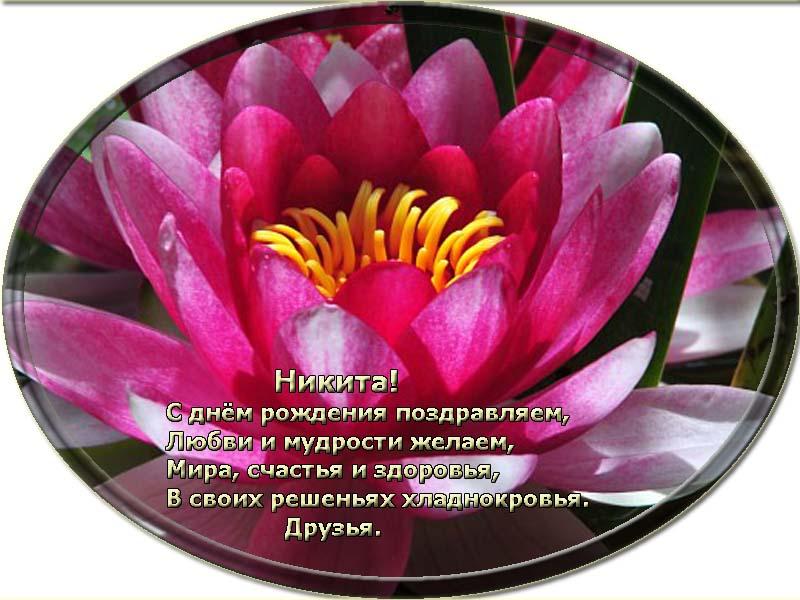posdravljaem_nikita_korenev