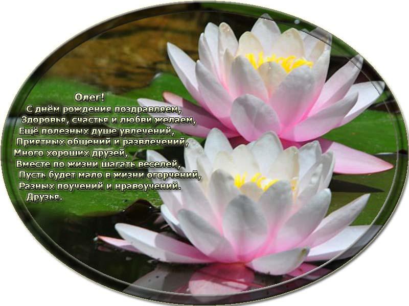 posdravljaem_oleg_banketov