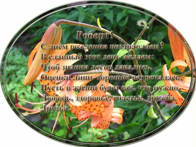posdravljaem_robert_makarov