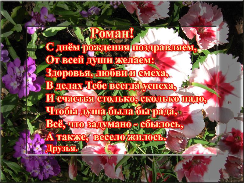 posdravljaem_roman_hol
