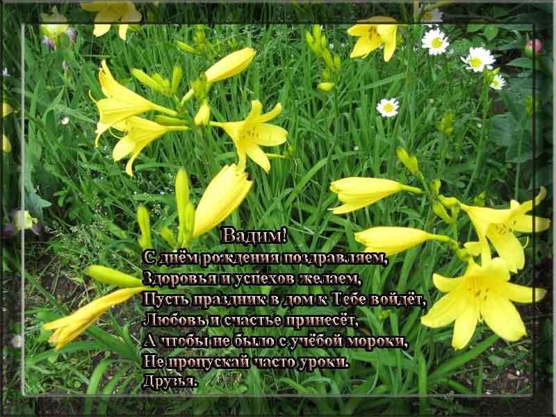 posdravljaem_vadim_gnutov