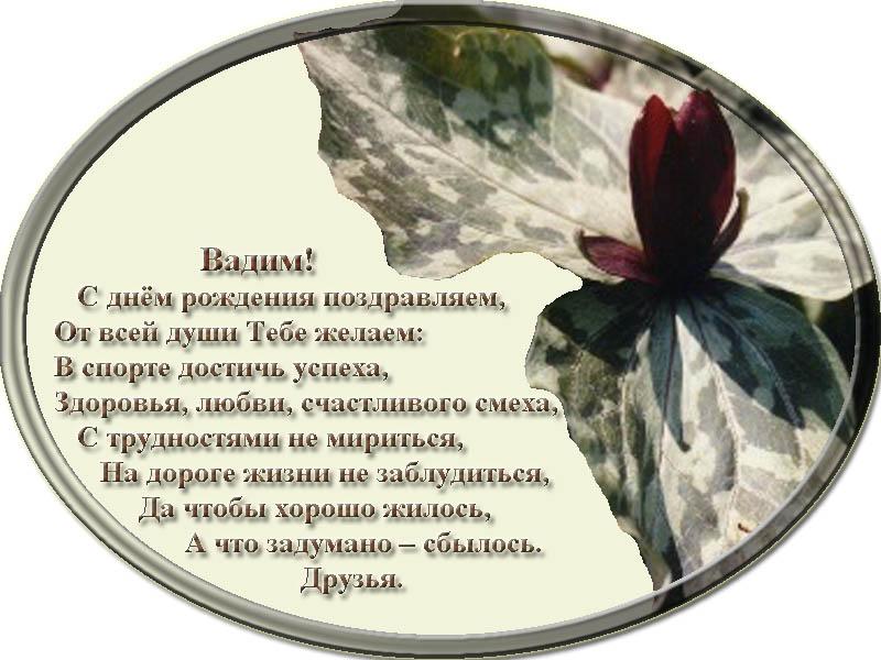 posdravljaem_vadim_shv