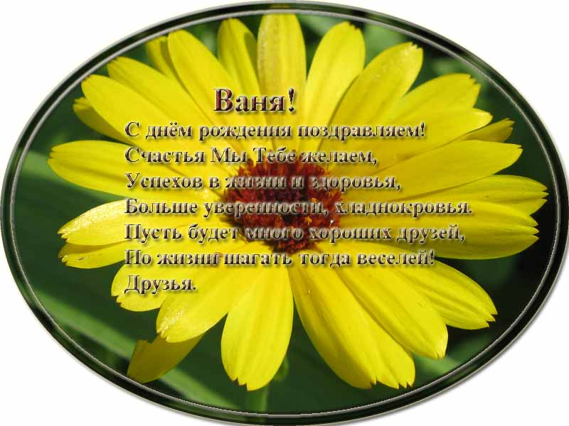 posdravljaem_vanja_kuzovkin