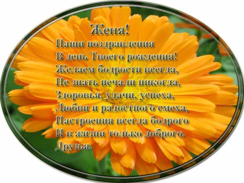 posdravljaem_zenja_belov