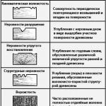 Sherohovatost2