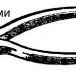 provoloka 9